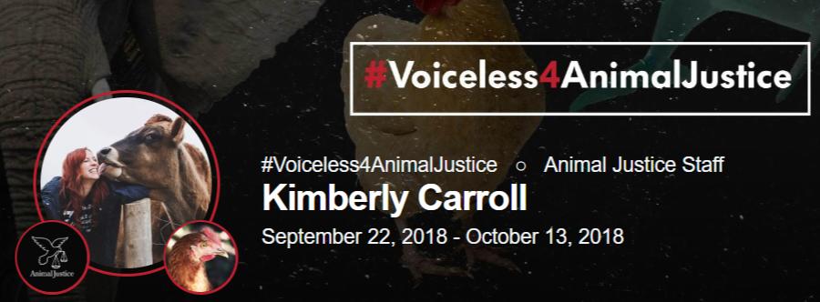 AJ - voiceless image