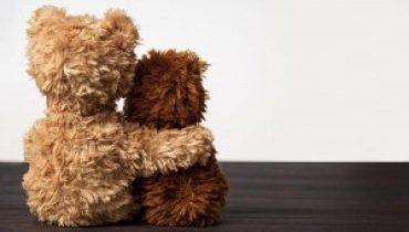 Dollarama blog - bears hugging